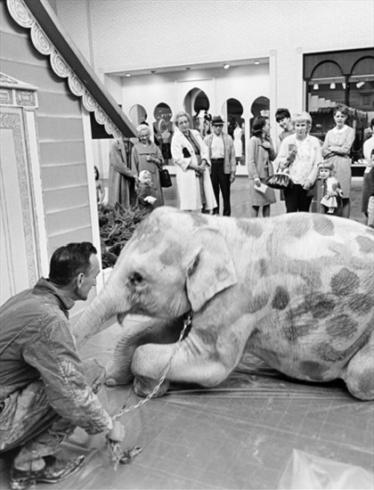 Sybil the Baby Elephant      March 15, 1967