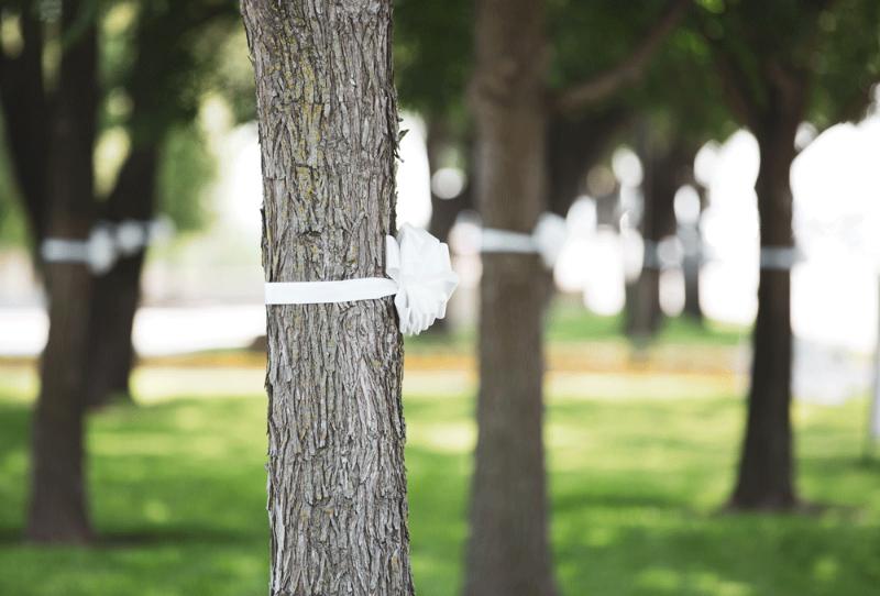 northpark white ribbons